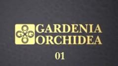 gardenia-anteprima